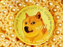 Dogecoin Price Boost: Elon Musk Tweets 'Space Race' vs. Bitcoin in Support of Meme Crypto