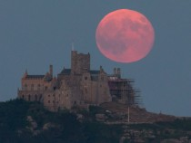 Strawberry Moon 2021: Watch Date, Time, and How to View Supermoon Using Virtual Telescope!