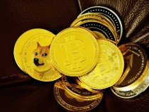 Dogecoin Price Boost: Elon Musk Joins Mark Cuban in Empowering Doge