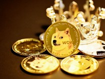 Dogecoin a Bad Investment? Expert Calls It 'Terrible,' But Doge Price Predictions See Massive Surge