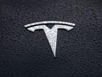 Elon Musk Tweets Truth Bomb on Tesla FSD Beta 9.2: It's