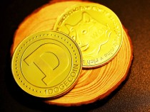 Wifedoge Price, Prediction, and Potential: Should You Invest in Dogecoin's Wife?