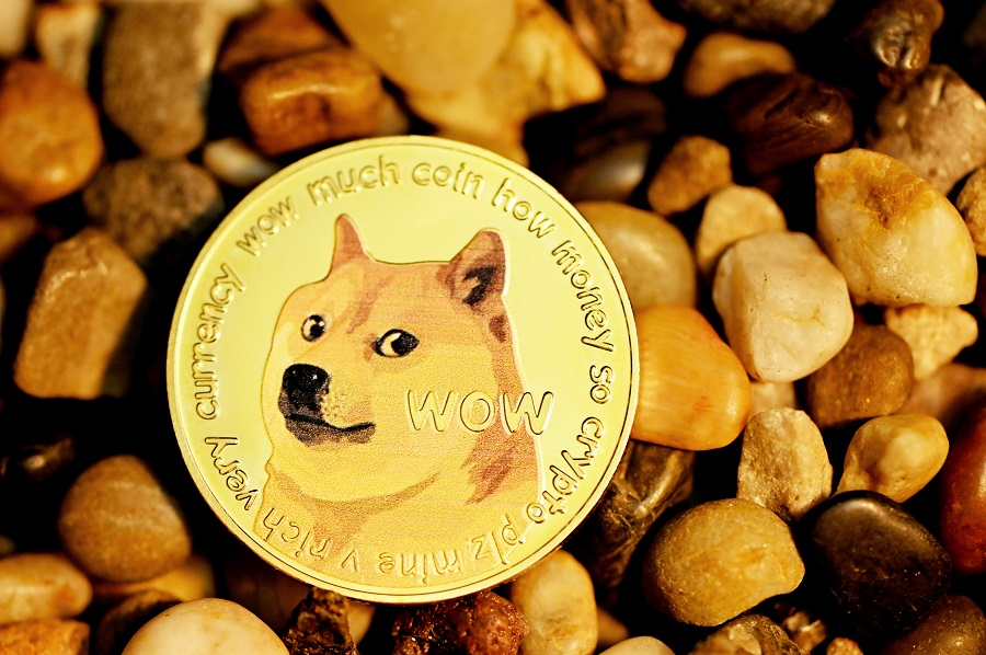 Elon Musk Gives Dogecoin Price a Massive Boost With Cute Tweet! [PHOTO]