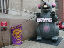 File:CWA union rat protest Verizon.jpg