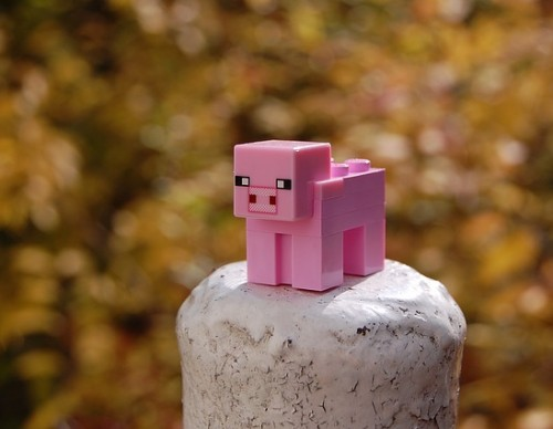 Mojang Announced Chinese Release Of 'Minecraft'; Game To Have No More Restrictions