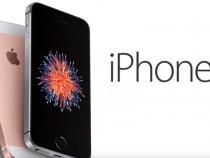 Apple Sales Slow Drop