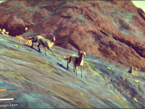 'No Man's Sky' Update: Creator Hello Games Says Don't Compare Game's Aliens With Earth Species