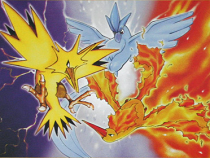 Pokemon Legendary Birds