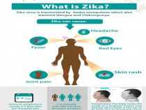 What is Zika Virus?