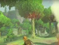 Zelda Cooking With Link