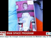 Iran monkey space launch