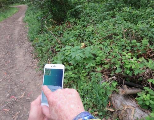 A Virtual Reality App