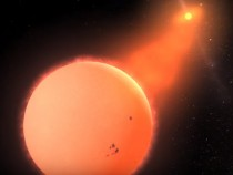 Supermassive Black Holes' Growth Explained: Dense Molecular Gas Disk The Key?