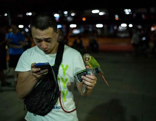 Pokemon GO Goes Live In Taiwan