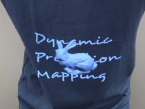 Dynamic Projection Mapping onto Deforming Non-Rigid Surface