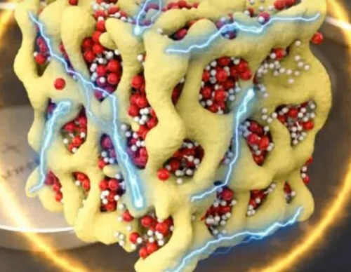 Oxygen-Transporting Blood Molecule Could Open New Doors To Efficient Batteries