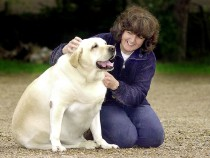 Pet Insurance: How Important Is It To Pet Owners?