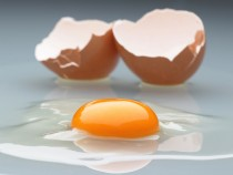An Egg A Day Might Lower Stroke Risks