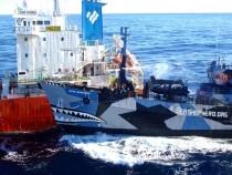 Sea Shepherd Vessel Bob Barker