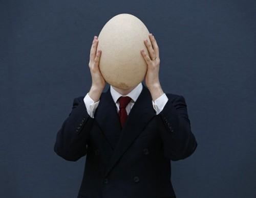 World's Biggest Egg