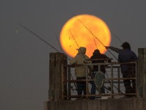 The Supermoon Effect: Can It Drive People And Animals To Go Wilder Than Before?