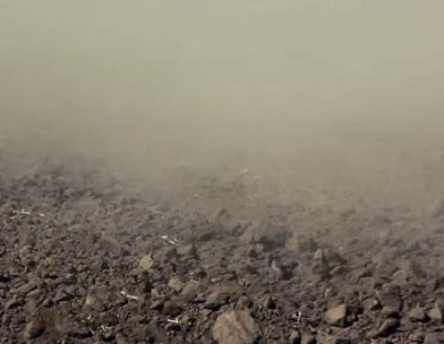 Climate Change: Blame Earth's Soil For Releasing Carbon Dioxide