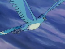 Ditto Of 'Pokemon Go' Will Be Newest Member Of Game, Articuno Nowhere To Be Found; Latest Updates On Android And iOS Game Tolerance