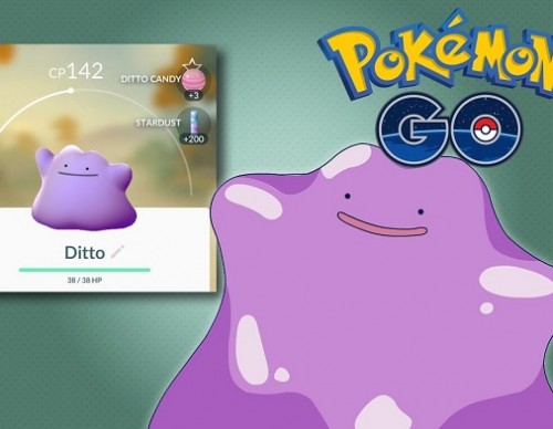 Pokemon GO Things To Know About Ditto