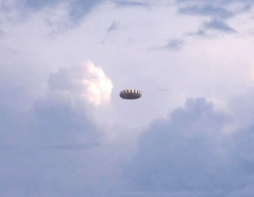 UFO Sighting: An Unknown Creature Seen On The Sky Of Florida
