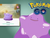 Pokemon Go Update:Top 5 Pokemon That Will Be Introduced Later Similar To Ditto