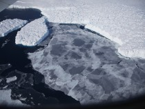 Experts Claim That Antarctic Ice Is Not Melting Rapidly; Can We Still Save Earth?