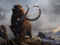 Climate Change: Vertebrates During Ice Age Failed To Adapt
