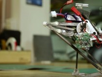 Meet Salto: Most Vertically Agile Robot Ever