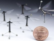 RoboFly robotic insect