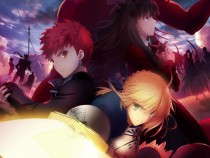 Fate Anime 2017 Projects