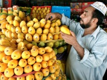 Mangoes are good for your health