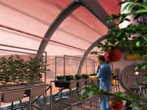 Mars Farming