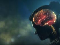 Breakthrough Multiple Sclerosis Drug, Ocrelizumab, Slows Down Brain Damage