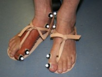Prosthetic Toe
