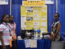 Urine powered fuel generator