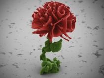 Nano Flower