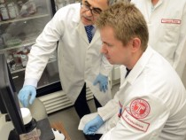 Researchers Suggest New Method To Destroy HIV