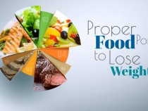 Proper Food Portion To Lose Weight