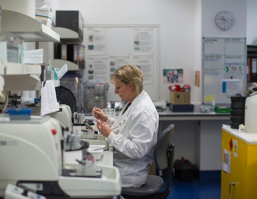 Research Into Cancer Conducted At The Cancer Research UK Cambridge Institute