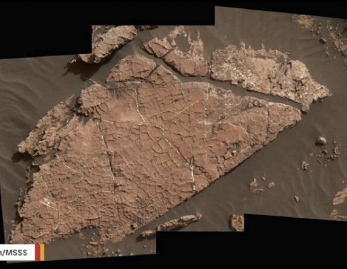 NASA's Curiosity Rover May Have Found Martian Mud Cracks