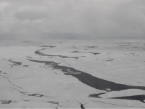 Global Warming Might Change A Bit, New Icy Island Forms In The Arctic