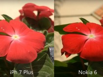 iPhone 7 Plus and Nokia 6 shots