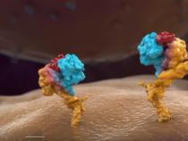Glioblastoma: Breakthrough Treatments For The 'Untreatable' Brain Cancer