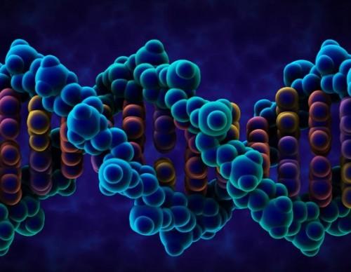 Human Genes Regulating Code Unlocked By Scientists