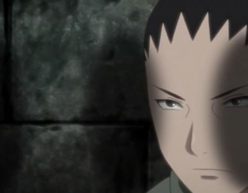 Naruto Shippuden Episode 493 Preview